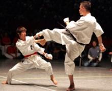 Узнай своих героев! VIII Международный турнир по каратэ